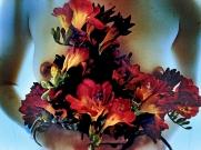 Flower Chest 2012