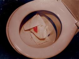 Toilet Heart 2013