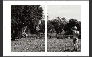 Billy & The Deers