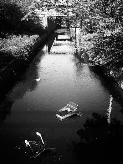 Abandon Shoping Trolley Sinking On A Lake