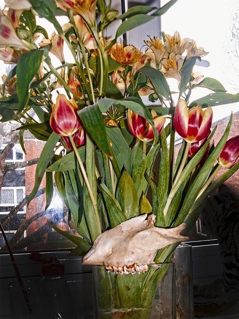 Bones Breed Flowers
