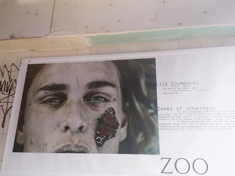 News – Page 2 – Lily Zoumpouli